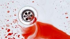 Чому вони кровоточать? Є відповідь!